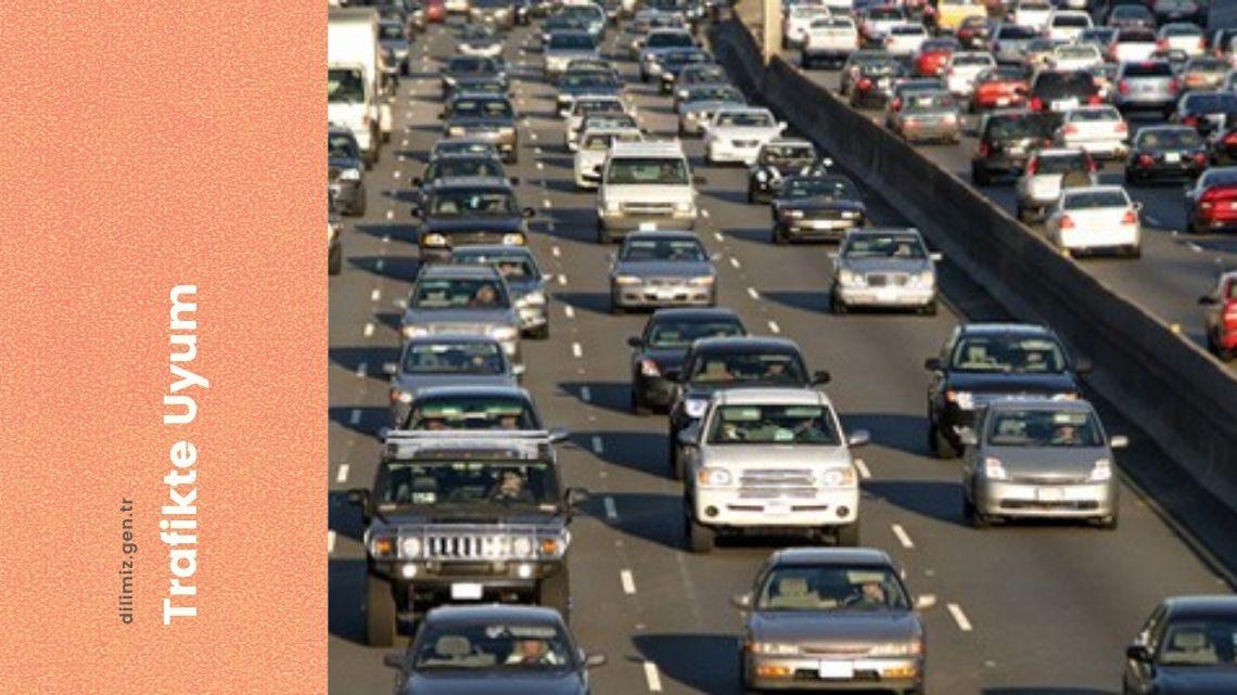 Trafikte Uyum