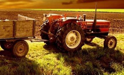 Türkiye'de Tarım Sektörü